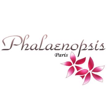 Phalaenopsis Paris